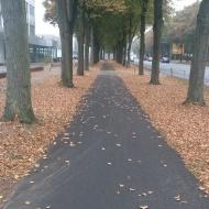 Mein Herbst