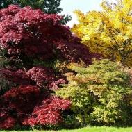 Oktober im Bürgerpark