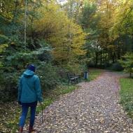 Ein Spaziergang im Bürgerpark