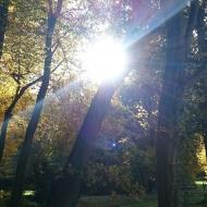Sonne in Bremen